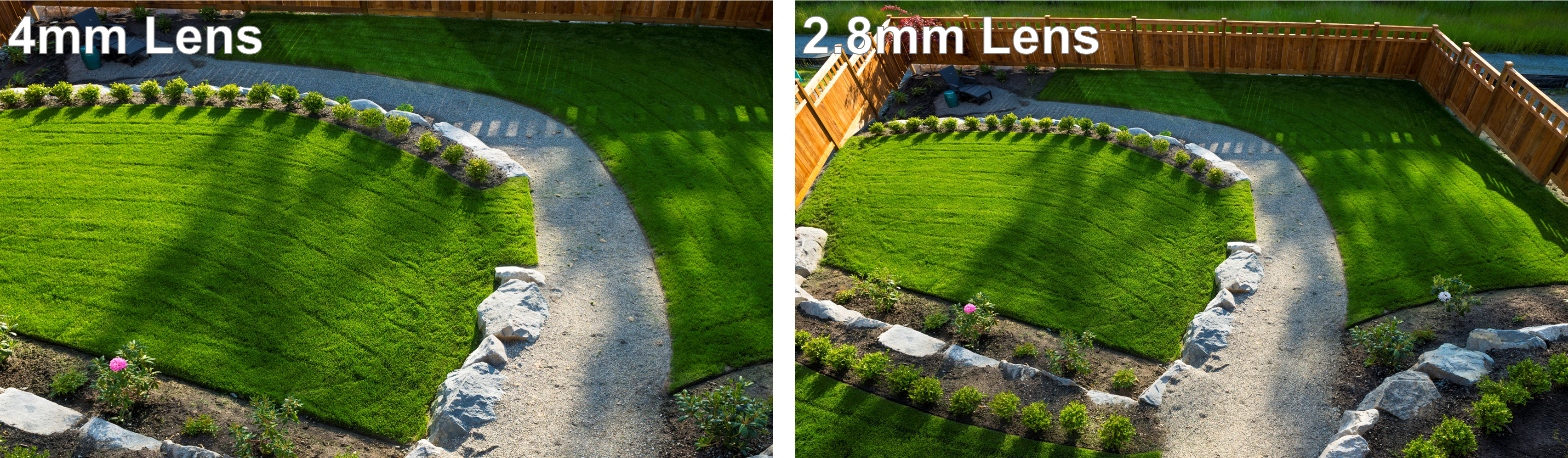 Camera Focal Length Comparison (Backyard)