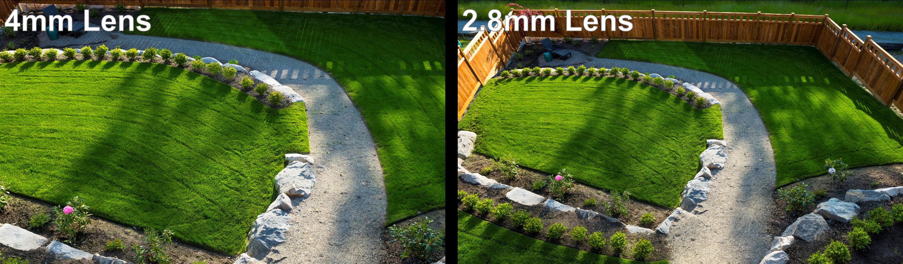 Camera Focal Length Comparison (Backyard)
