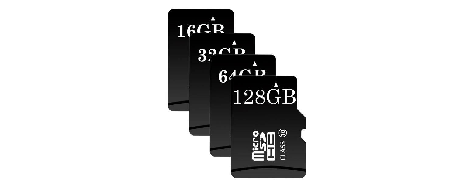 ClareVision Plus SD Card Storage